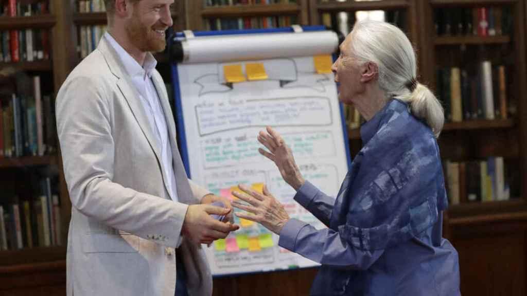 Harry de Inglaterra y la primatóloga británica Jane Goodall.