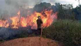 Fotografía cedida por los Bomberos del estado de Acre que muestra a miembros de los bomberos mientras combaten un incendio este sábado.