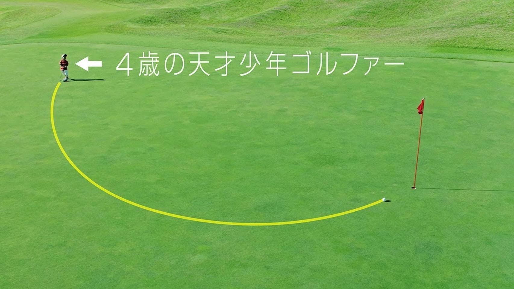 Nissan Pro Pilot Golf Ball