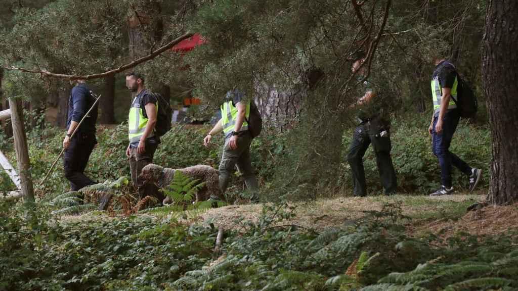Los perros de búsqueda, con los agentes de la Guardia Civil durante este lunes.