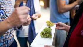 Tiempo de vendimia: 7 experiencias únicas para participar en la gran fiesta del vino