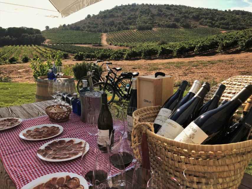 El picnic en el viñedo de Cepa 21.