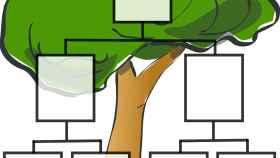 ¡Investiga y construye tu propio árbol genealógico!