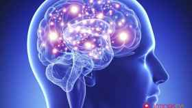 Semana del cerebro, Trending Topic
