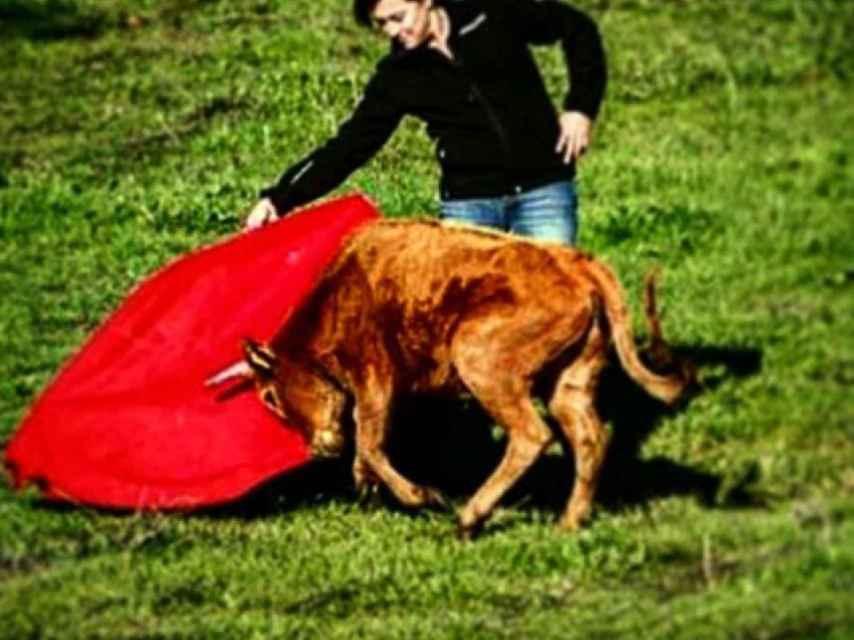 Blanca muleteando a un becerrillo en el campo. El toreo era otra de sus grandes pasiones.