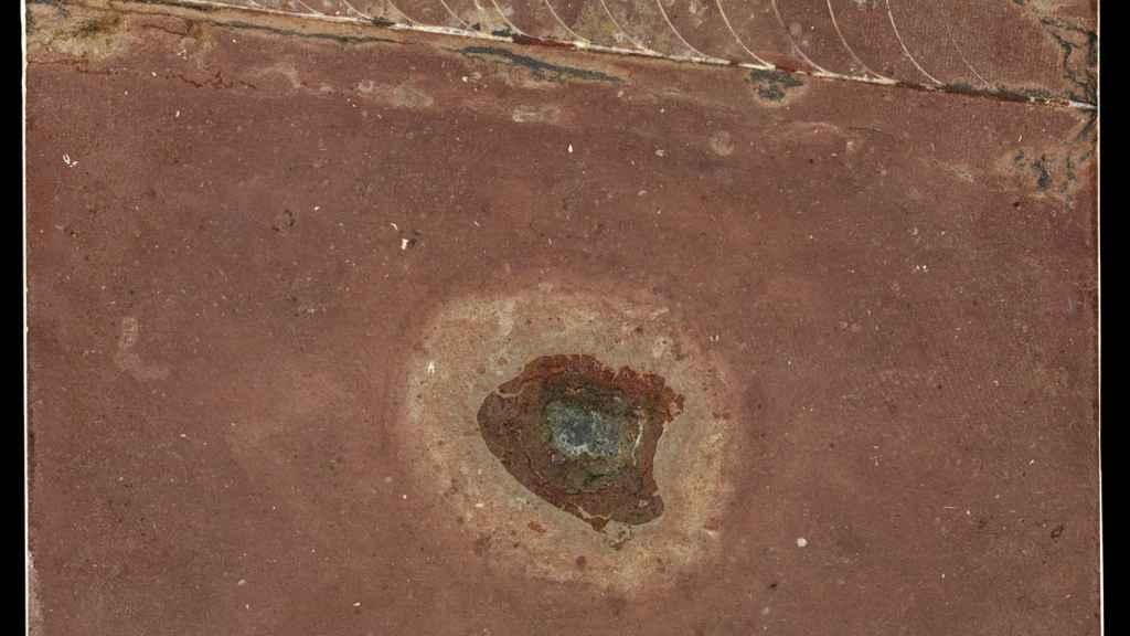Restos de meteorito encontrados en una roca de 466 millones de años de antigüedad junto a un fósil de  una especie de calamar (nautiloide) /  John Weinstein,Field Museum