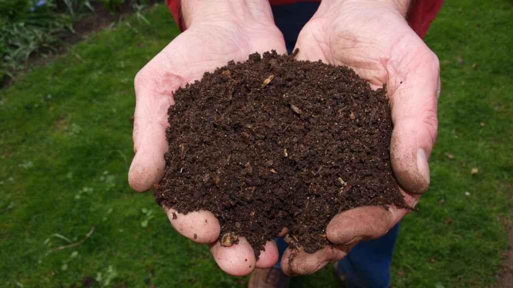 Compost casero, un fertilizante natural