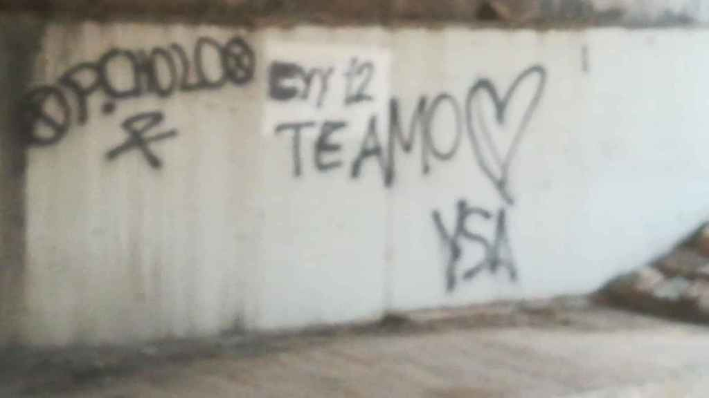 El graffiti que realizó el menor a plena luz del día.