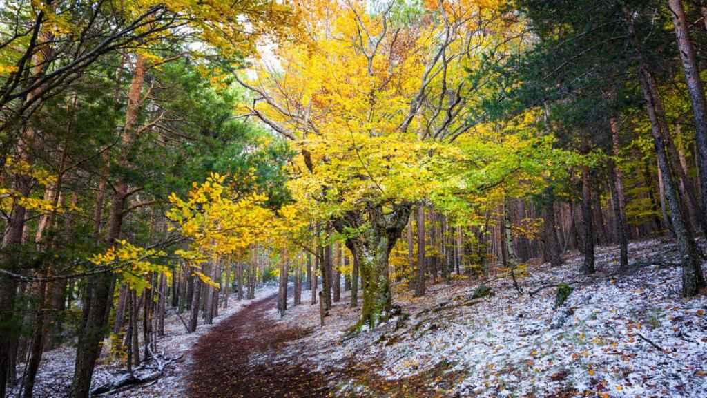 El paisaje es simplemente maravilloso y los colores del otoño le confieren un aura misterioso.