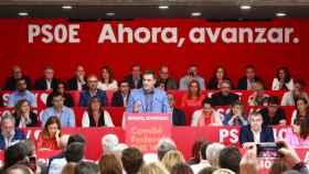 Pedro Sánchez, ante el Comité Federal del PSOE, reunido este sábado en Madrid.