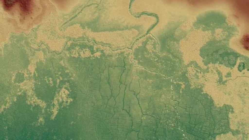 Imagen del antiguo sistema de campo de humedales mayas de Birds of Paradise y partes de otros cercanos.