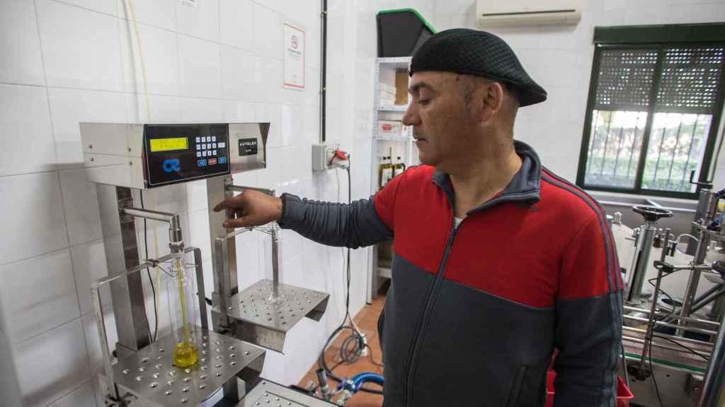 La cosecha de 2018 del aceite de 'La Resistencia' se produjo en la almazara Cruz de Esteban.