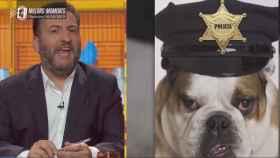 """TV3 compara a los Mossos d'Esquadra con perros y los llama """"malparidos"""" y """"putos perros de mierda"""""""