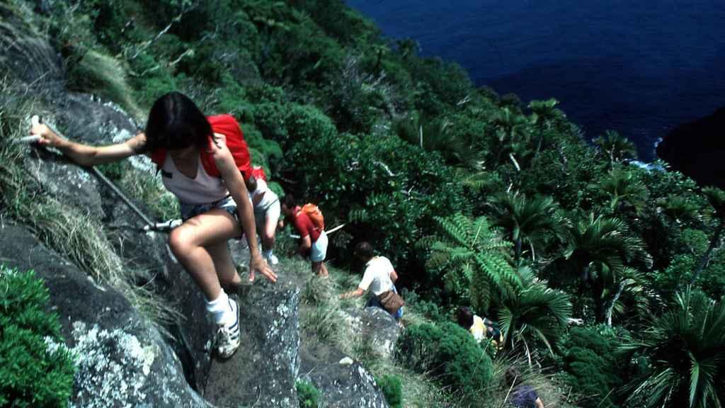 El montañismo es una de las actividades que se pueden practicar en Lord Howe.