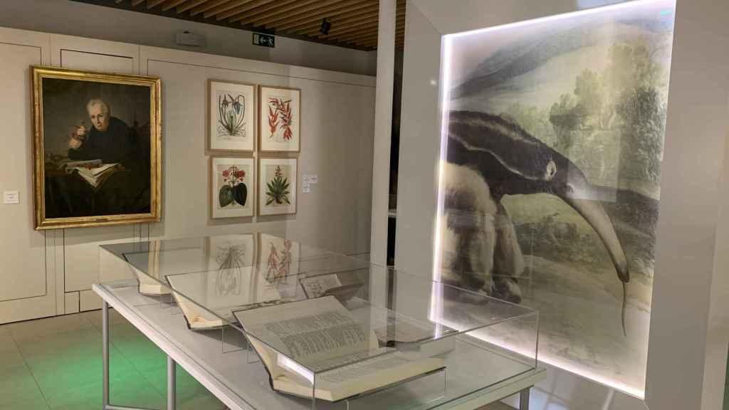 Vista de la exposición 'La ciencia. Un patrimonio histórico'.