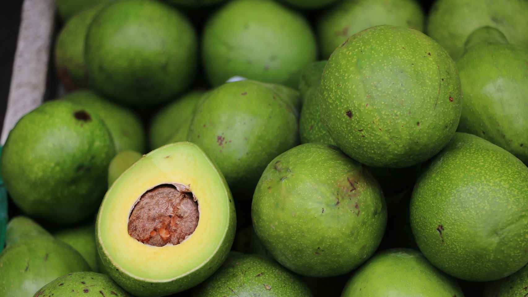 Aguacate: cinco cosas que deberías saber sobre esta fruta rica en grasas