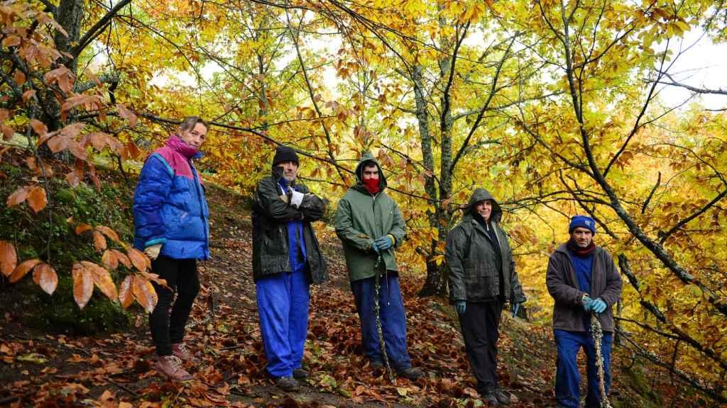 Varios agricultores de Piornal patrullan por lo montes en busca de ladrones