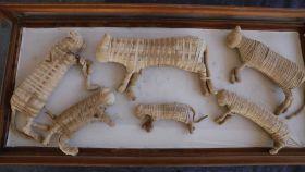 Las momias del cachorro de león y otros cinco felinos.