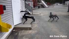 Estados Unidos ya está usando los perros robots de Boston Dynamics