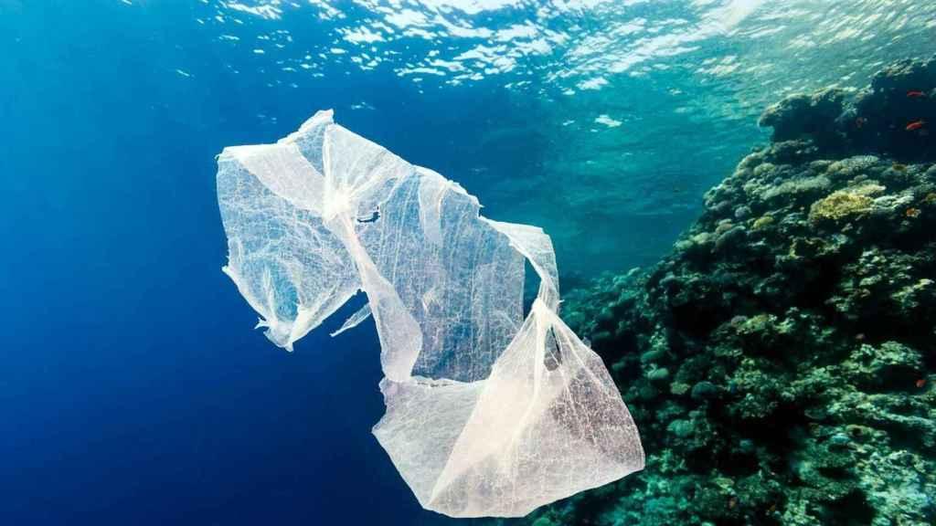 Una bolsa de plástico flota junto a un arrecife de coral.