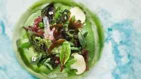 Mar y Montaña vegetal, plato de los hermanos Roca para la COP25