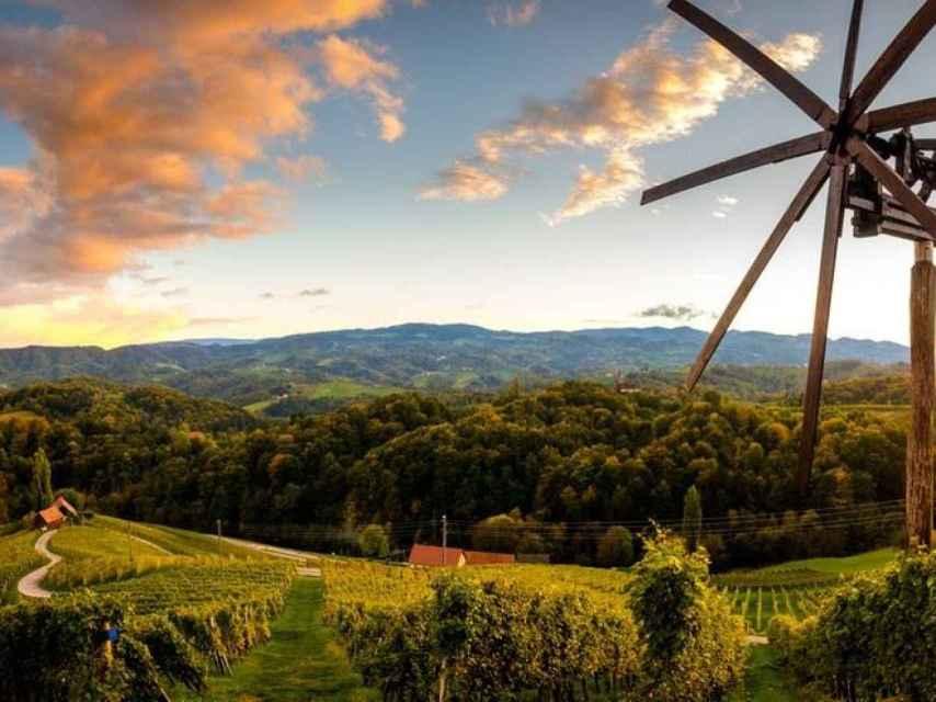 Cada región vinícola eslovena tiene su propia ruta de vinos.
