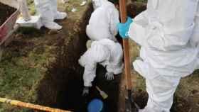 Fosa común hallada en el departamento colombiano de Antioquia.