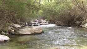 Río Castril.