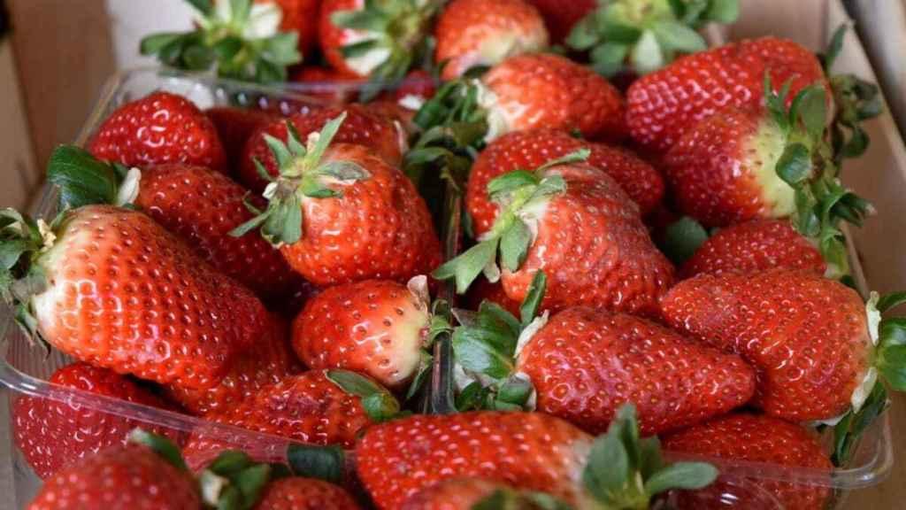Los frutos rojos deben su color a las antocianinas, un potente antioxidantes muy beneficioso para nuestra salud.
