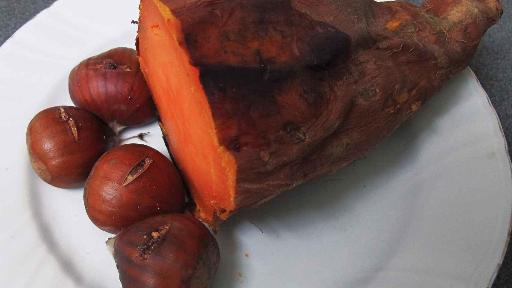 Na Catalunha, é geralmente comido em Castanhas tradicionais para celebrar o dia de todos os santos.