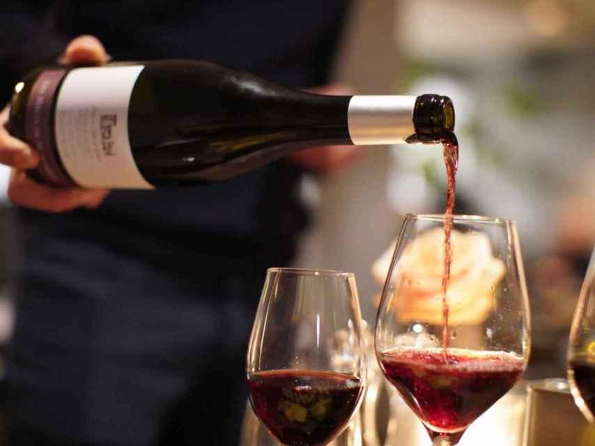 Inglaterra se convierte en productora de vinos