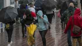 Lluvia y viento en Sevilla durante la borrasca Elsa. María José López/EP