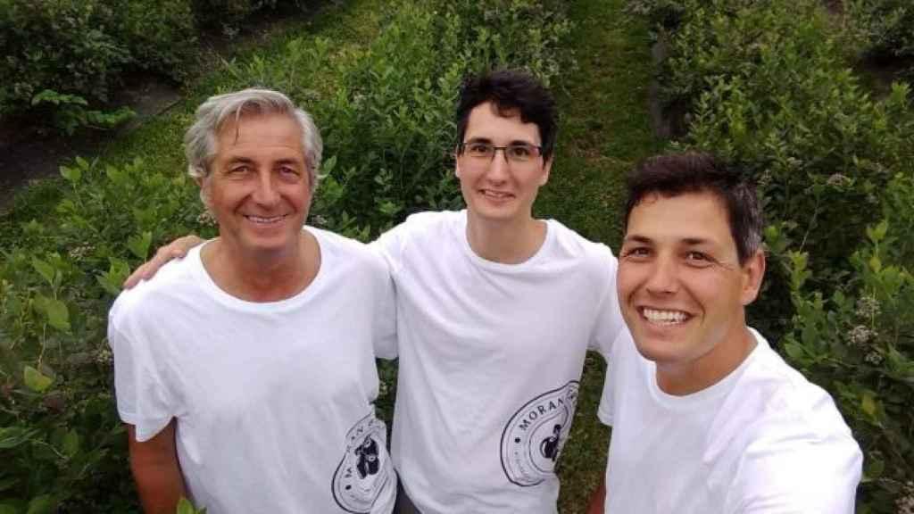 Samuel (i), junto a su padre José Luis Morán y a su hermano Rodrigo en la plantación de arándanos.