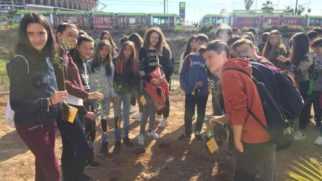 Alumnos del instituto Alfonso X de Murcia plantando árboles en el entorno del estadio La Nueva Condomina.