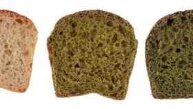 Pan blanco, pan con un porcentaje de microalgas en lugar de harina y pan con una cantidad de biomasa de alga mayor.
