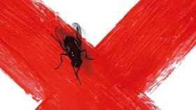 Imagen de la portada del libro de Carmen Mola (Penguin Random House)