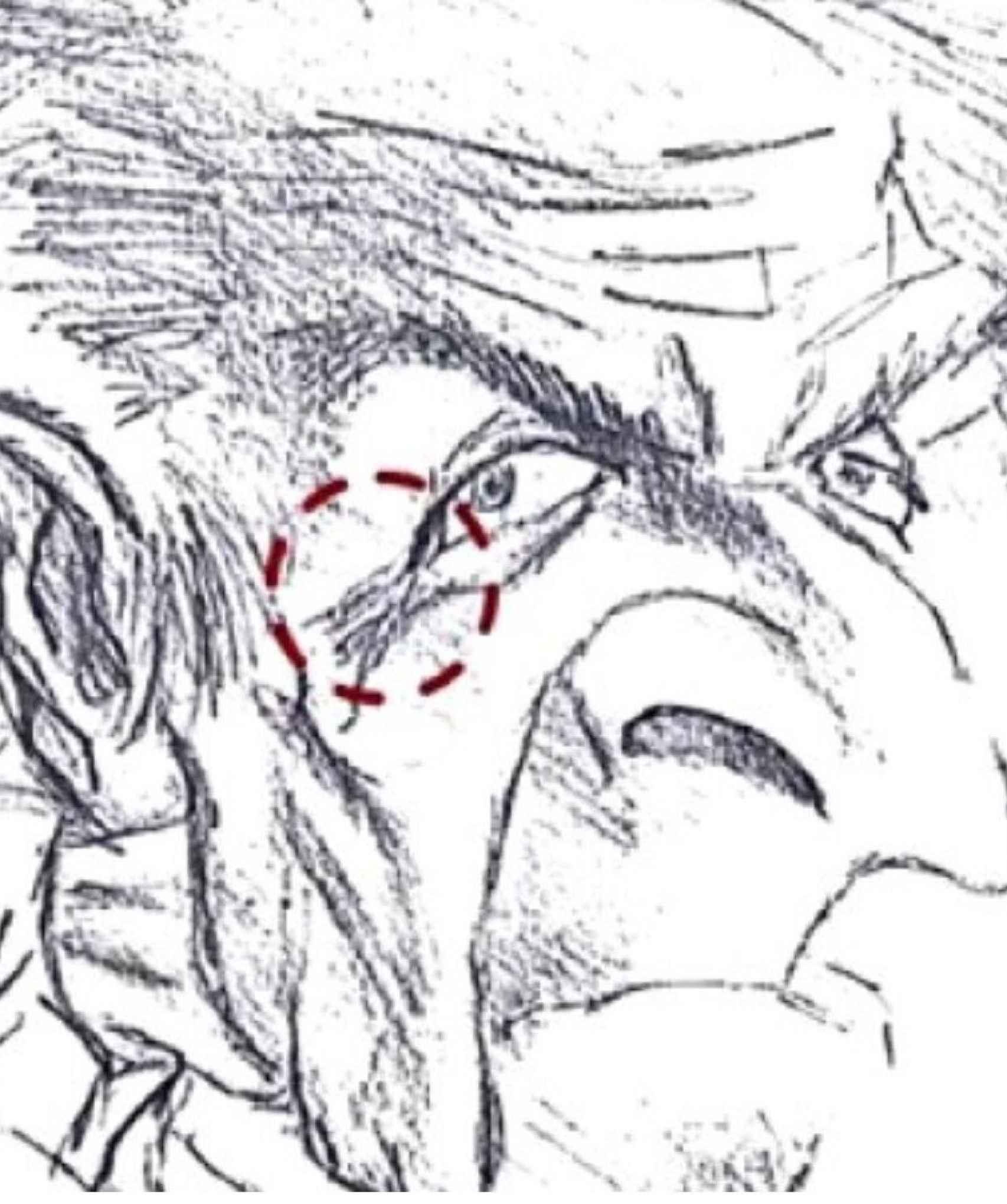 La caricatura que dibujó David.