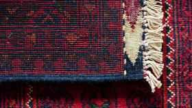 Cómo limpiar alfombras y librarte de los cultivos de bacterias
