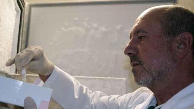 El investigador del CSIC Mariano Esteban es también asesor de la OMS.