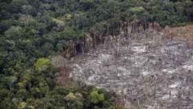 Fotografía de un terreno de selva deforestado, en el Parque Nacional Natural Tinigua, en Colombia.