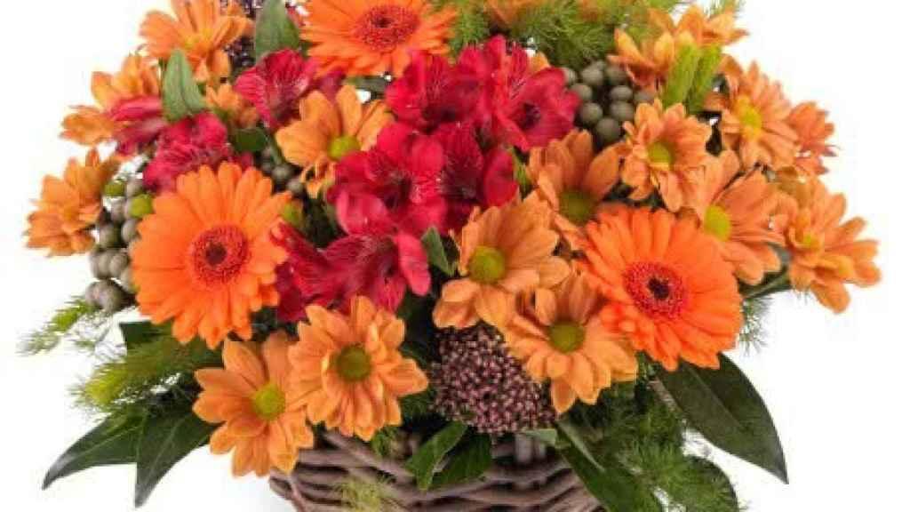 Las flores también pueden mejorar la productividad durante el teletrabajo.