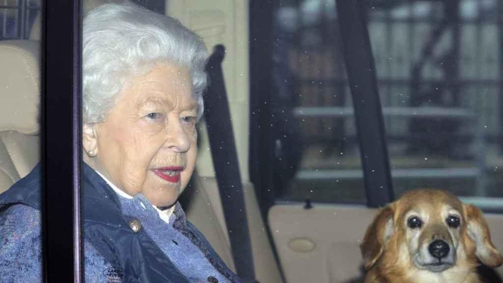 Isabel II junto a sus corgis de camino a Windsor.
