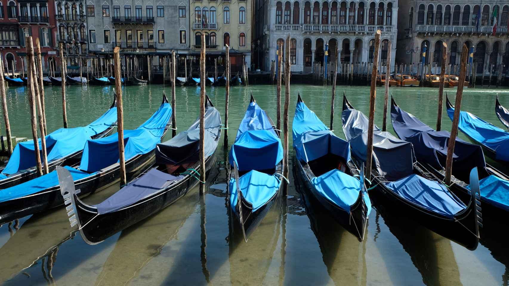 Una vista de este miércoles de los canales de Venecia con agua clara por la menor cantidad de turistas, lanchas motoras y contaminación.