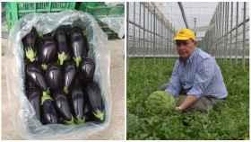 Eduardo López, productor de hortalizas y secretario de COAG en Andalucía.
