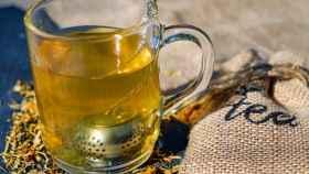 Efectos curativos del boldo para tu salud