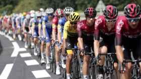 El pelotón del Tour de Francia en su edición de 2019