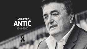 Radomir Antic