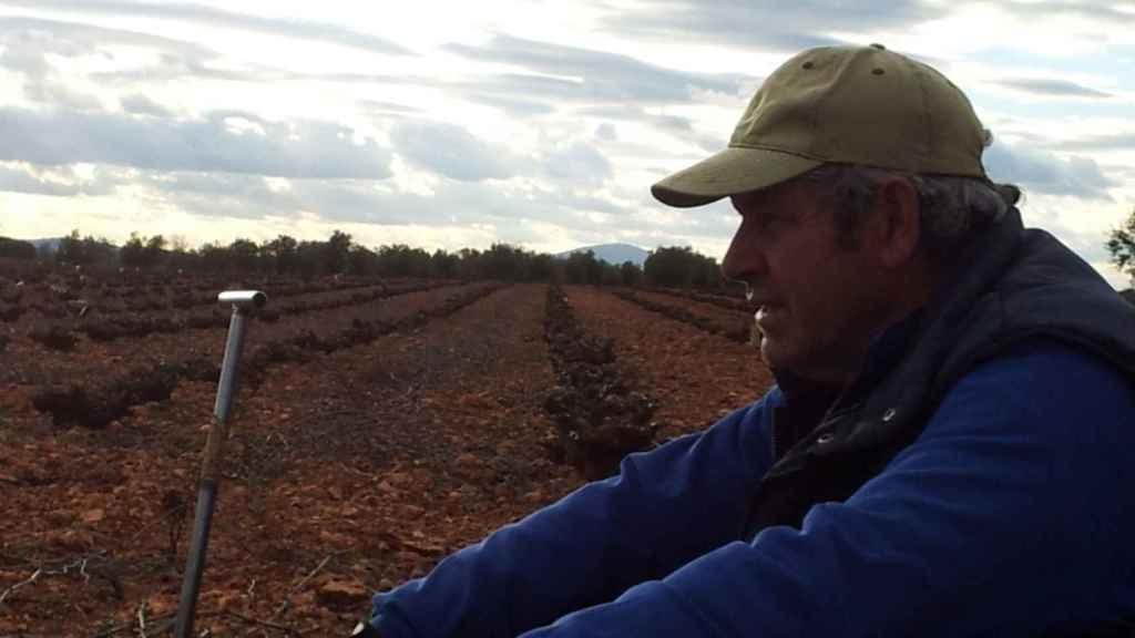 Arturo, pensativo, mientras se toma un descanso en una finca de Almedina donde está podando viñedos.