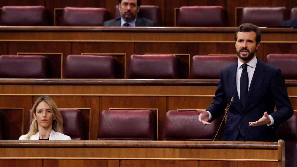 Pablo Casado, presidente del PP, en la sesión de control al Gobierno.