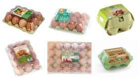 Huevos de marca blanca de Mercadona (Hacendado), Alcampo (Auchan), Carrefour, Dia, Aldi y Lidl.